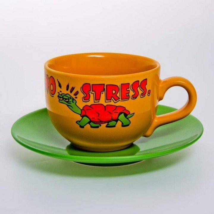 "Набор чайный 500 мл.2 пред.""Вехтерсбах-Non stresst"""